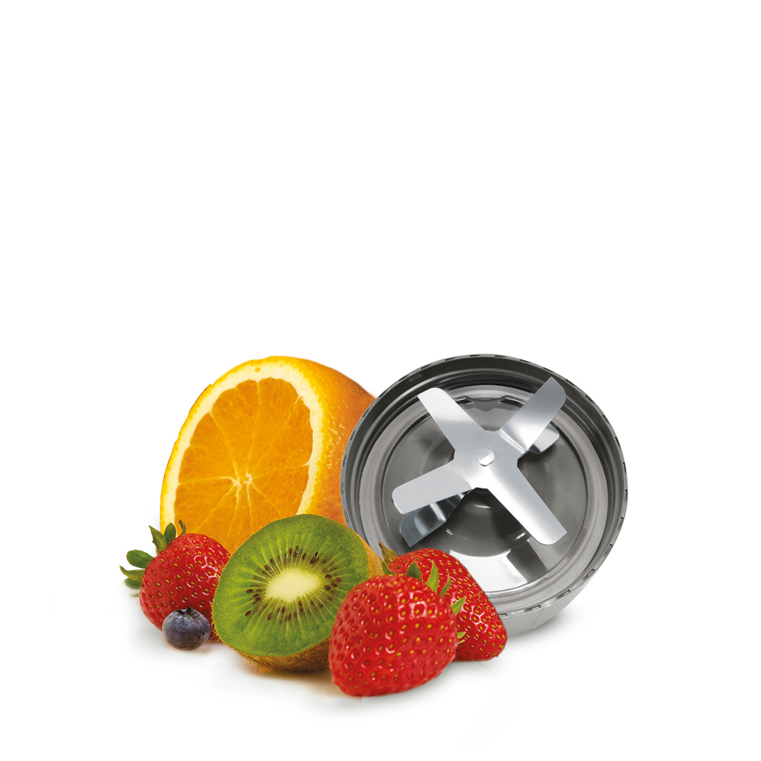 An image of NutriBullet Extractor Blade