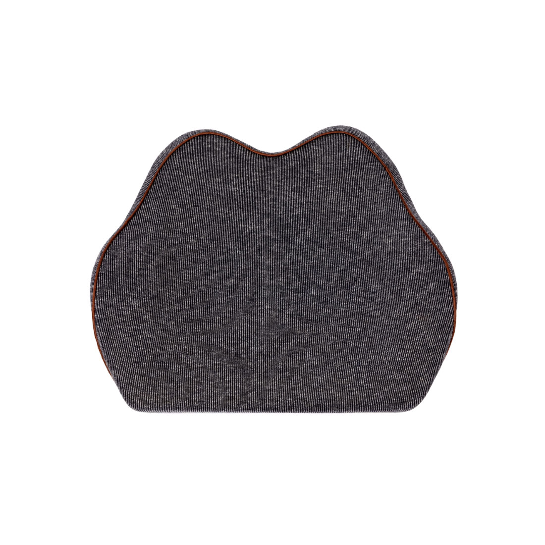 An image of Cubii Lumbar Support Cushion